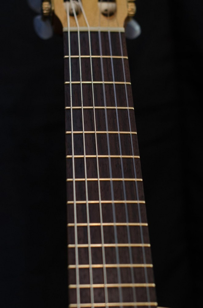 Brazilian Rosewood with Gold Frets