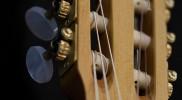 Guitalele 6-String Ukulele Head