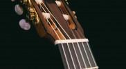 Hancock Guitars – Brazilian Rosewood & Ebony